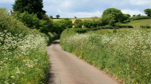 South Devon AONB Picture 3