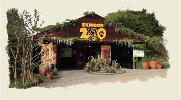 Exmoor Zoo Picture 1