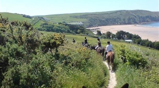 North Devon Riding Holidays Picture 1