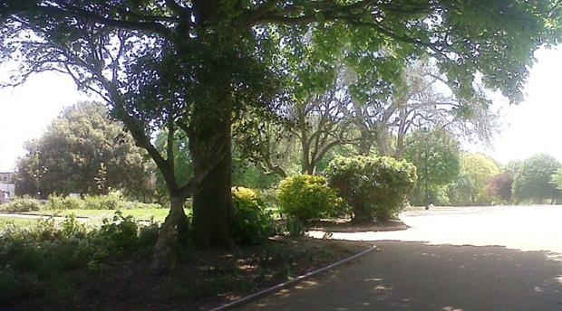 Devonport Park Picture 1