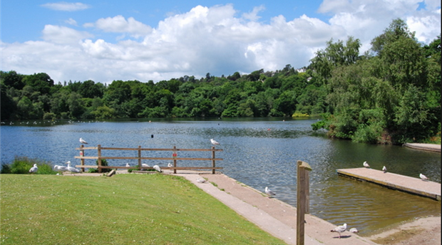 Decoy Country Park Picture 1