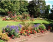 Rougemont Gardens, Exeter Picture