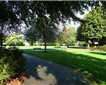 St Thomas Pleasure Ground, Exeter Picture