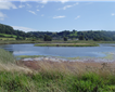 Axe Estuary Wetland Project Picture