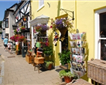 Modbury Tourist Information Centre Picture