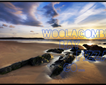 The Woolacombe Bay Pizza Co Picture