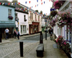 Buckfastleigh Picture