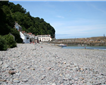 Clovelly Beach Picture