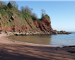 Watcombe Beach Picture